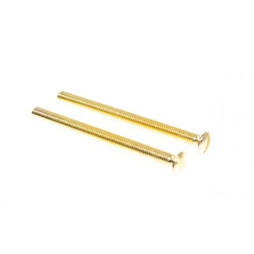 50mm Polished Brass Electrical Screws x 2 - Extra Long Screws